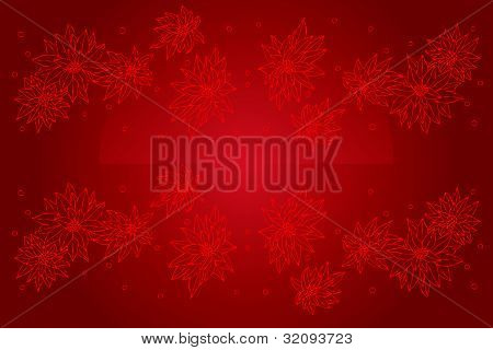 Red poinsettia. red christmas flower