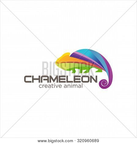 Creative Abstract Colorful Chameleon Logo Icon Design Vector
