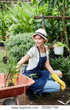 Pretty Smiling Young Woman Taking Flowers From The Wheelbarrow And Planting Them In Her Backyard