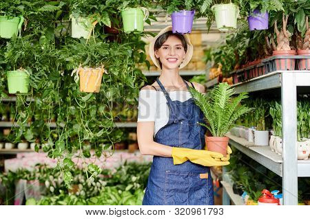 Portrait Of Pretty Female Greenhouse Worker In Blue Apron And Rubber Gloves Holding Pot With Plant