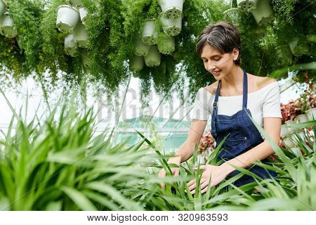 Smiling Pretty Young Woman Enjoying Working In Hothouse With Many Different Plants