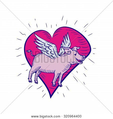 Doodle art illustration of a pig, hog or boar with wing flying side view set inside pink heart done in drawing sketch style on isolated white background in color. poster