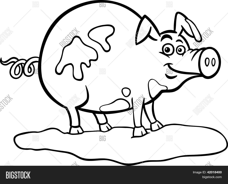 Vector y foto Dibujos Animados De Cerdo De Granja | Bigstock