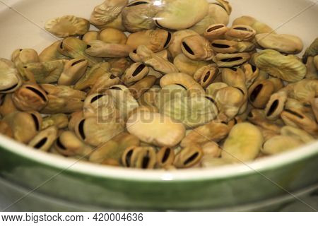 Dried Broad Beans Soaked In Water In A Bowl In The Kitchen
