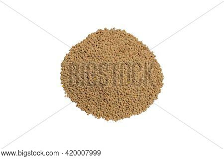 Brown Dry Raw Lentil Bean Heap Uncooked On A Clean Bright Kitchen Table Counter As Food Scene