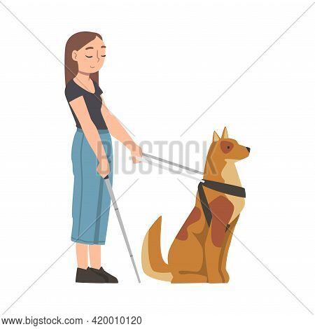 Seeing Eye Dog Guiding Blind Woman, Trained Animal Helping Disabled Person, Rehabilitation, Handicap