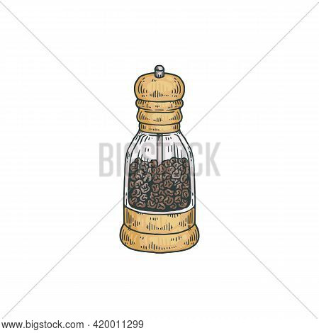Glass Pepper Mill With Rotating Lid, Engraving Vector Illustration Isolated.