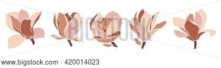 Set Of Magnolia Flowers On White Background. Style Floral Collage In Pastel Color Palette. Modern Mi