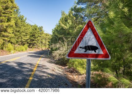 Road sign warning about land turtles crossing the road in Turkey. Animal crossing warning traffic sign