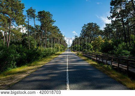 Asphalt Road And Wooden Walkway Between Ovar And Esmoriz, Portugal. Atlantico Eco Trail.