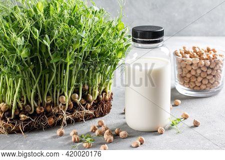 Alternative Vegan Milk Of Chickpeas In Bottle, Raw Chickpeas In Glass On Light Gray Background. Non-