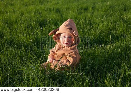 Baby Boy In Green Grass