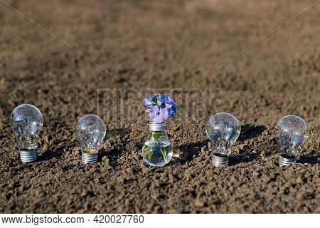 Electric Lamp Bulb With Periwinkle Flowers. Abstract Image Symbolizing Technology And Nature. Five L