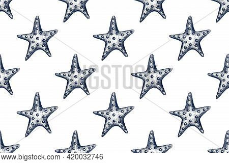 Seamless Pattern With Hand Drawn Pencil Illustration Of Starfish