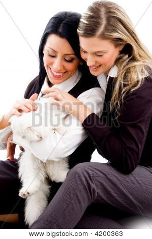 young sisters playing with cat against white background poster