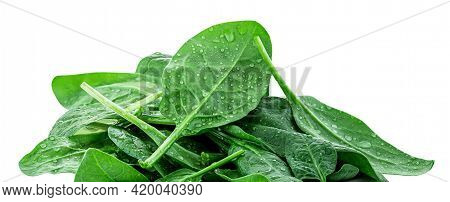 Spinach Leaves Isolated On White Background. Pile Of Fresh Green Baby Spinach, Border