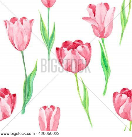 Pink Tulip Flower Plant And Green Leaf Seamless Pattern, Illustration Watercolor Drawing Isolated On