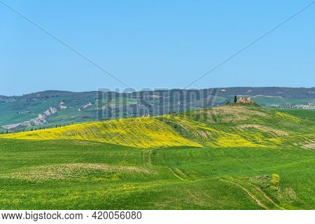 Amazing Spring Colorful Landscape. Beautiful Farmland Rural Landscape, Cypress Trees And Colorful Sp