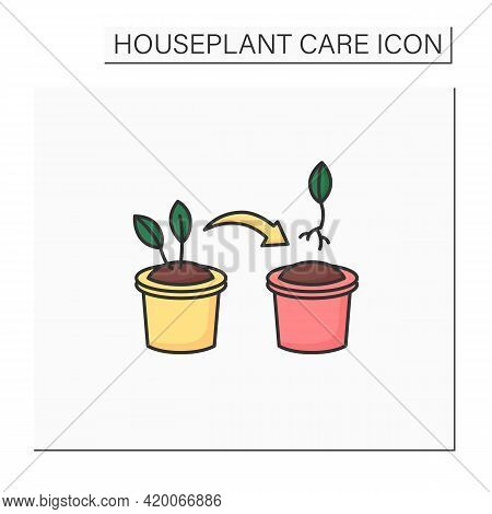 Propagate Color Icon. Spread Houseplant. Bulb Share To Other Pot. Home Gardening. Houseplant Care Co