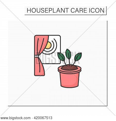 Lighting Color Icon. Lighting Houseplant. Home Gardening. Photosynthesis. Beautiful Home Plant In Po