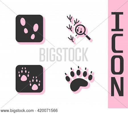 Set Bear Paw Footprint, Human Footprints Shoes, Paw And Bird Icon. Vector