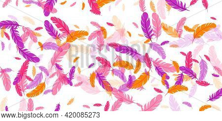 Orange Purple Red Feather Floating Vector Background. Falling Bird Plumage Illustration. Abstract Fl