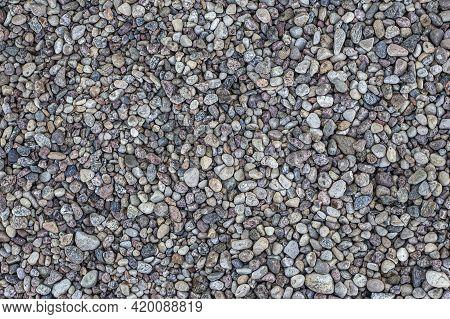 Smooth Round Pebbles Texture Background. Pebble Sea Beach Close-up, Dark Wet Pebble And Gray Dry Peb