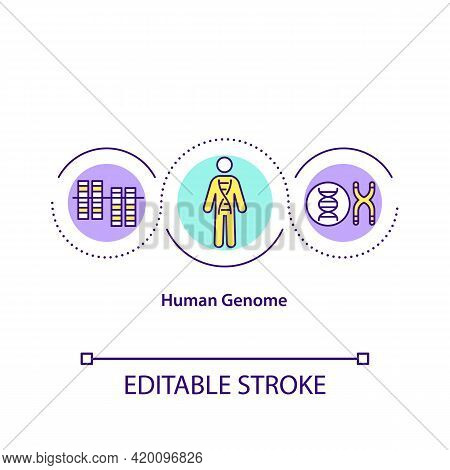 Human Genome Concept Icon. Set Of Nucleic Acid Sequences Of Human Body. Clinical Health Research Ide