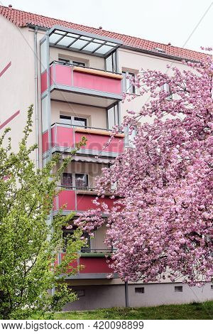 Cherry Blossoms In Front Of Modern House With Balconies, Euronean Appartment Block Of Flats In Berli