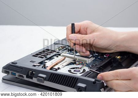 Woman Repairs The Computer. She Tries To Unscrew The Screw Near The Cover.the Laptop Does Not Work,