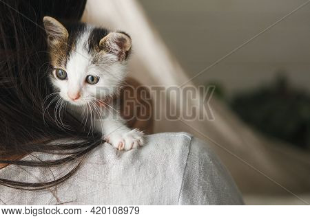 Woman In Rustic Dress Holding Cute Little Kitten On Shoulder. Portrait Of Adorable Curious Grey And