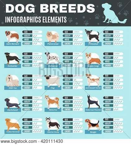 Colored Breed Dogs Infographics With Size Agility Noise And Energy Points Of Different Breeds Vector