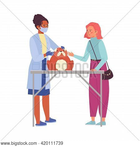 Woman Showing Her Pet To Veterinarian Doctor, Flat Vector Illustration Isolated.