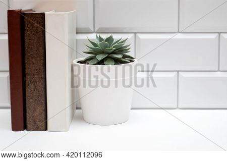 Shelf With A Few Book And Succulent On White Brick Wall.