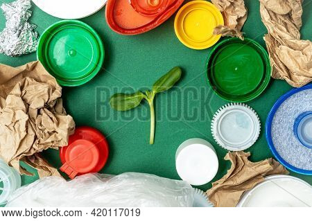 World Environment Day. Green Plant Surrounded Different Types Of Garbage As Paper, Plastic Bottle Sc