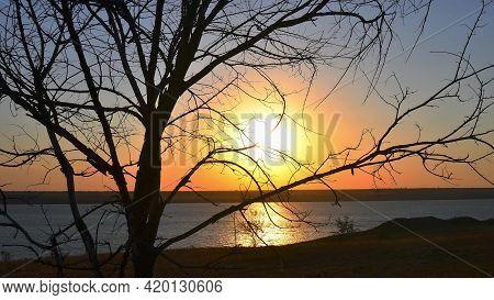 Sundown View Shot Through Bare Tree Twigs Near Lake Shore With Sun Reflection In Rippled Water Surfa