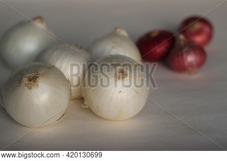 White Onion Or Allium Cepa Is A Cultivar Of Dry Onion Which Have A Distinct Light And Mild Flavour.