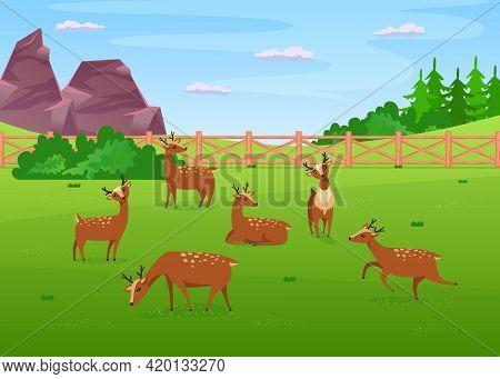 Deer Grazing In Meadow Flat Vector Illustration. Little Cute Deer Eating Grass, Lying, Running And R