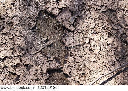Cracked, Dried Mud Close Up, Background Or Texture