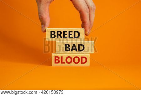 Breed Bad Blood Symbol. Businessman Holds Wooden Block With Words 'breed Bad Blood'. Beautiful Orang