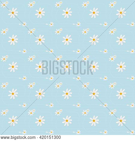 Chamomile Pattern. Vector Illustration Of White Daisies On A Blue Background