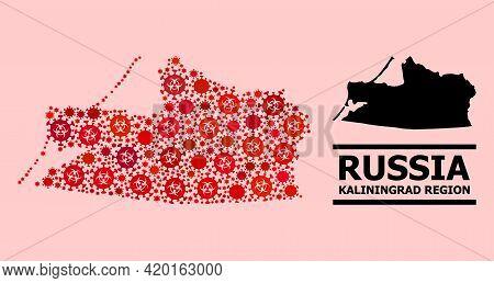 Vector Coronavirus Mosaic Map Of Kaliningrad Region Constructed For Hospital Projects. Red Mosaic Ma