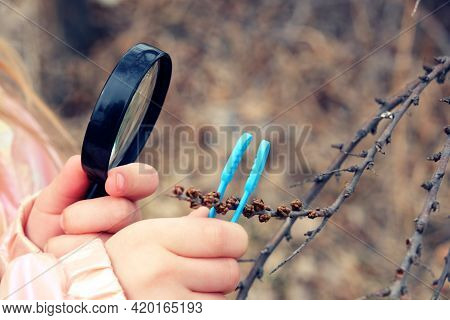 Little Girl With A Magnifying Glass In Her Hand Investigate  Details Of Spring Nature . Springtime O