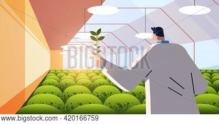 Male Agricultural Engineer Researching Plant In Greenhouse Agriculture Scientist Smart Farming Conce
