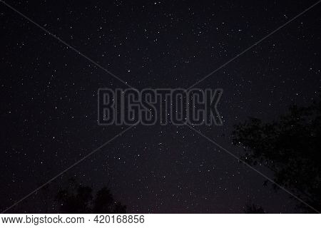 Night Full Of Bright Stars. Star Trails Picture
