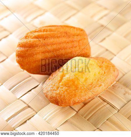 close up on madeleine cake