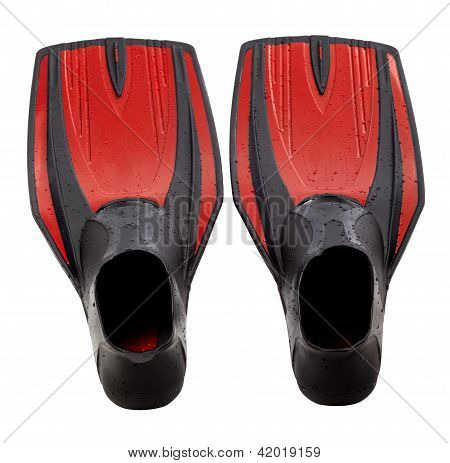 Red Swim Fins