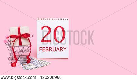 20th Day Of February. A Gift Box In A Shopping Trolley, Dollars And A Calendar With The Date Of 20 F
