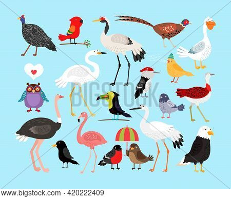 Cute Vector Birds. Eagle And Heron, Crow And Flamingo, Stork And Parrot, Duck And Pigeon