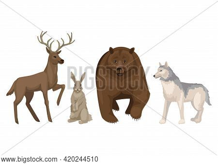 Deer, Hare, Bear And Wolf. Forest Animals, Isolated Characters On White Background, Vector Cartoon I